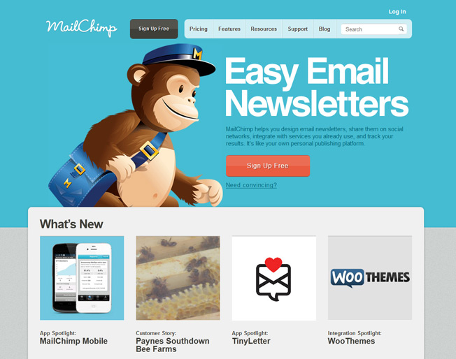 mailchimp homepage image and conversions